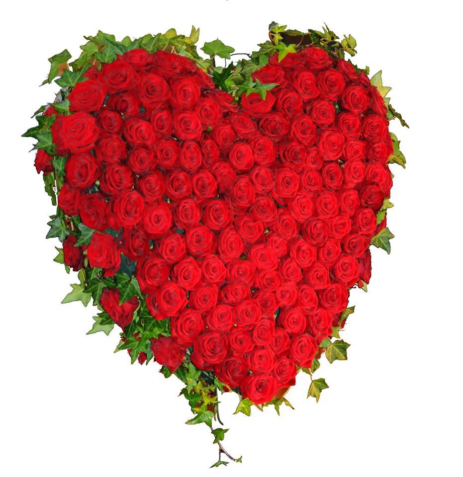 Das Herz Als Beziehungsorgan Zwischen Dem Menschen Und Der Geistigen Welt