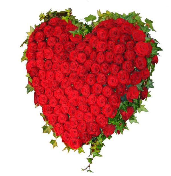 Das Herz als Beziehungsorgan